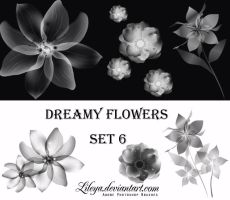 Dreamy Flowers set 6 by Lileya