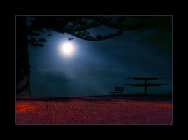bloodnight by barns