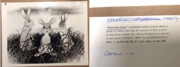 Watership Down black and white Lobby card(?) by Squirrellkkitt