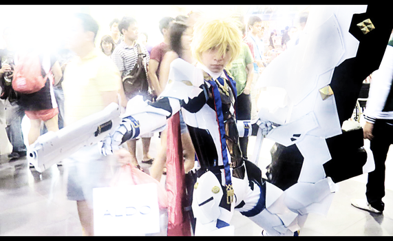 Animax Chung Seiker 2012 by Leakingheart