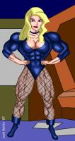 Black Canary by LordKelvin