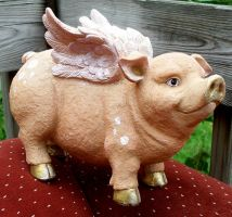 Flying Pig 7 by Penny-Stock