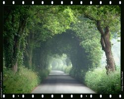 Misty Lane Revisited 1 by unclejuice