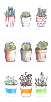 Plants by RainingSeasons