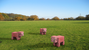 Three pigs on a grass field by Mikes8899