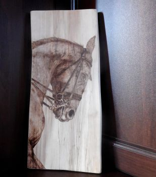 horse portrait (pyrography woodburning) by Art-Caren