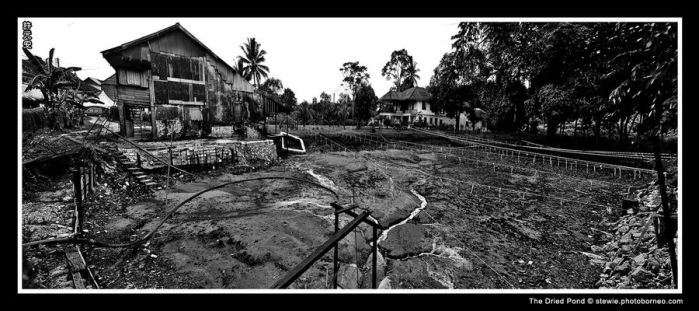 The Dried Pond by limecity