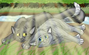 Silverstream and Graystripe by BosleyBoz