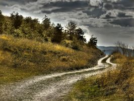 The path by rattodisabina