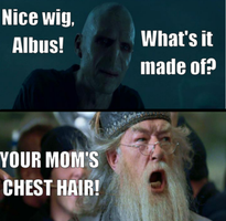 Funny Hp pic by Phictionmaker7