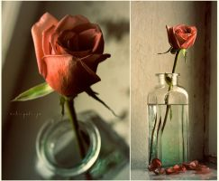 All that remains from love... by Anti-Pati-ya