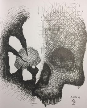 Sketch of a skull #2 by MarcoHauwert