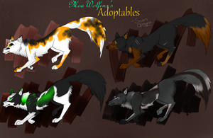 Wolf/Canine Adoptables (100 Points) (OPEN 2/4) by MeaWolfenX