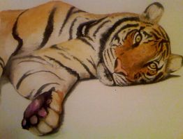 Realistic Tiger Watercolour by PrincessPeach88