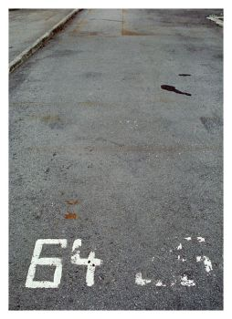 .. 64 .. 65 .. by rt-photo