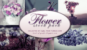 Flower stocks pack by Cael by herocael