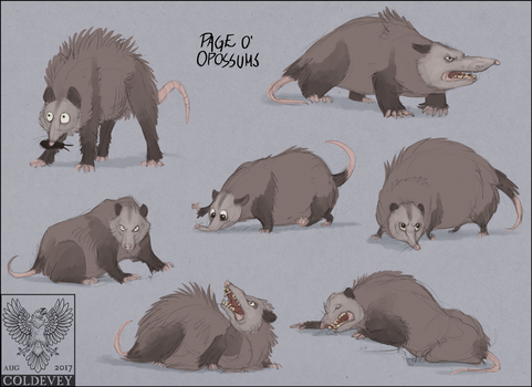 Page o' Opossums by Coldevey