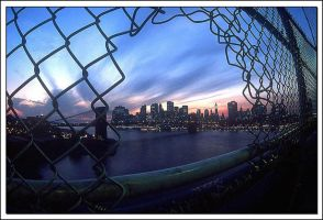 New York State of Mind by dmack