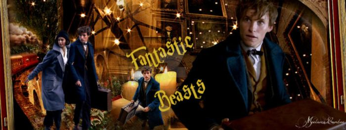Fantastic Beasts by paranormallily32