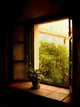 At the window by iram