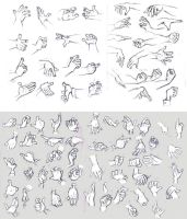 Hand Studies by BettyKwong