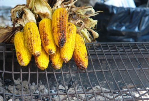 Grilled Corn by HarrisGraber