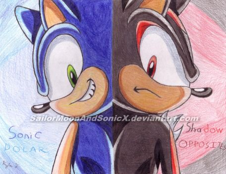 Sonic and Shadow: Polar Opposites by SailorMoonAndSonicX