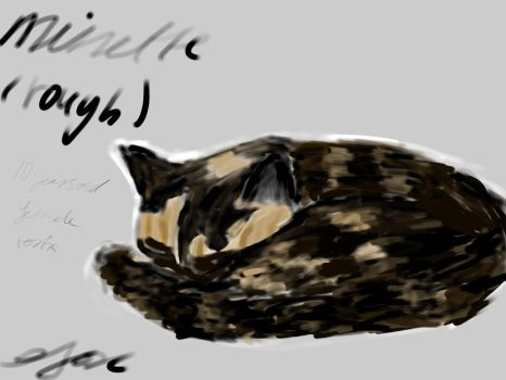 quick 30 minute sketch of my cat. by Thierry-ThefoxGamer