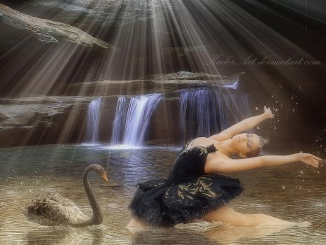 Dance With Swan by kaderart
