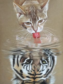 Always Believe.Cat Reflection by ivanhooart
