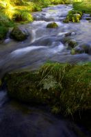 The river by Mizzi1238