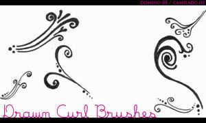 . 18 - drawn curl brushes by domino-88