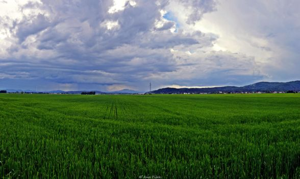 Before the Storm by AnaPisek
