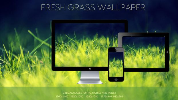 Fresh Grass Wallpaper by TtsNiss