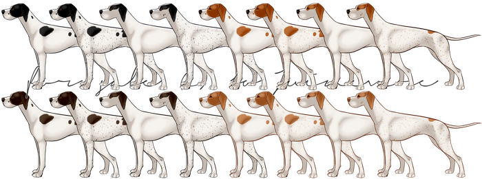 For Sale - Pointer .psd and premade .pngs by Juinevere