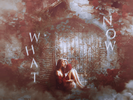 What Now ? - Wall by poolichoo